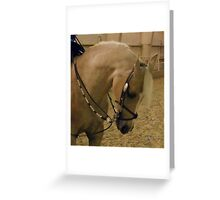Golden Mare-Silver Tack Greeting Card