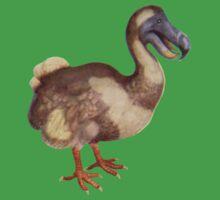 Dodo by albutross