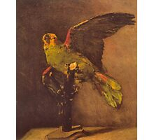 'Parrot' by Vincent Van Gogh (Reproduction) Photographic Print