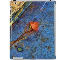 Saturated Rusted Property Marker iPad Case/Skin