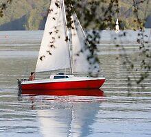 boy sailing by Artur Mroszczyk