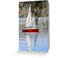 boy sailing Greeting Card