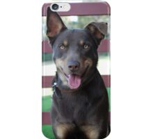 Australian Kelpie iPhone Case/Skin