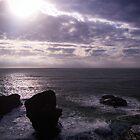 Purple Rocks by Robert Scammell