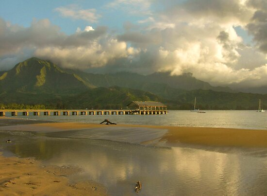 Tidal Pool Reflections, Hanalei Bay by Stephen Vecchiotti
