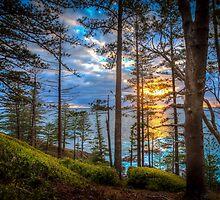 Norfolk Is. First Light by DavidMelville