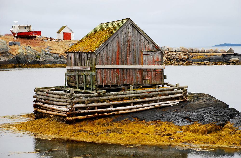 The Lobsterman's Cabin by Nancy Barrett