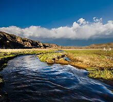 Inlet to Jordanelle Reservoir in Utah #1 by Alan Mitchell
