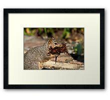 Mulch Thief Framed Print