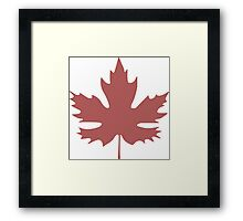 Canadian Maple Framed Print