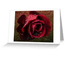 Textured Rose~ Greeting Card