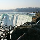 Niagras by JenTheDuck