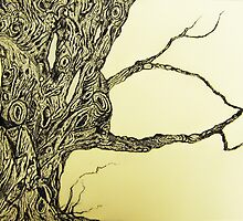 PHAGOS II - BEECH TREE - QUEEN OF THE WOODS by ANNETTE HAGGER