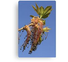 Tree Flowers Dangling Canvas Print