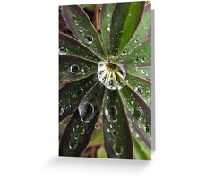 Lupine Leaf Greeting Card