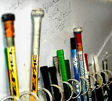 Hockey Sticks by Carolyn Prior