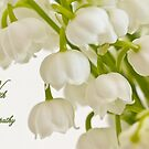 Lily Of The Valley - Sympathy Card  by Sandra Foster