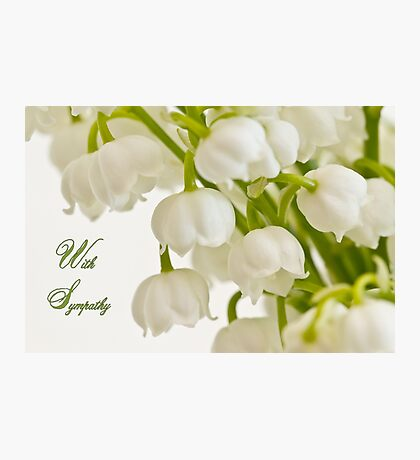 Lily Of The Valley - Sympathy Card  Photographic Print