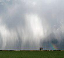 Deluge near Tempsford by Geoff Spivey