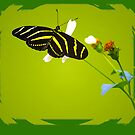 Zebra Butterfly by George  Link