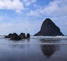 Whaleshead Beach, Samuel H Boardman State Park, Curry County, Oregon, USA by Mike Kunes