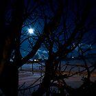 Shetland Winter Moonlight, Shetland Islands, Scotland by Del419