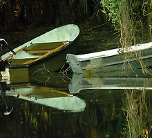 Two boats on shore by Larry  Grayam