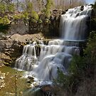 An Overview - Chittenango Falls by Stephen Beattie