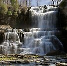 Spring Flow - Chittenango Falls by Stephen Beattie
