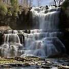 Spring Flow - Chittenango Falls by Stephen Beattie