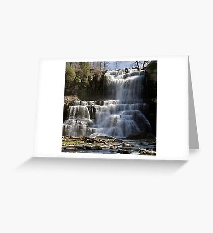 Spring Flow - Chittenango Falls Greeting Card
