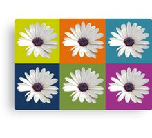 White African Daisy Collage On Bright Background Canvas Print