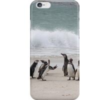 Magellanic Penguins Coming up the Beach iPhone Case/Skin