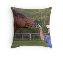 Beer for my Horses Throw Pillow