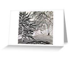 Black Snow Fall Greeting Card