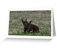 There goes the neighborhood (baby foxes) 02 Greeting Card
