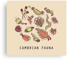 Cambrian Critters Canvas Print