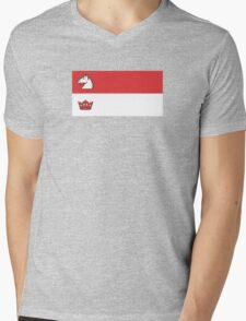 Flag of Guelph  Mens V-Neck T-Shirt