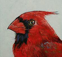 Cardinal by Michael Creese