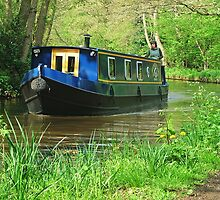 Narrowboat  by Colin J Williams Photography