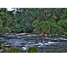 Williams River 2 Photographic Print