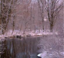 Fresh Snow by Shelly Harris