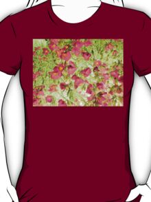 soft blossoms T-Shirt