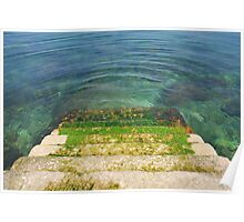 Mossy Steps Leading Down into Water Poster