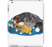 Three Kittens on Momma have a Cat Nap iPad Case/Skin