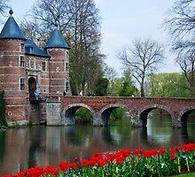 Groot Bijgaarden Castle and Gardens 2 by Alison Cornford-Matheson