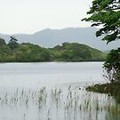 Lake at Kylemore by Finbarr Reilly
