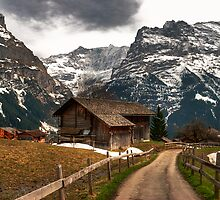 The Alps at dusk by GOSIA GRZYBEK