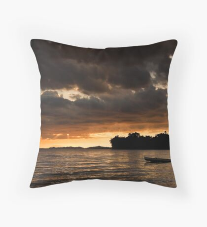 Lets Go Home Throw Pillow