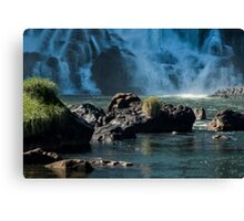Base of the Falls Canvas Print